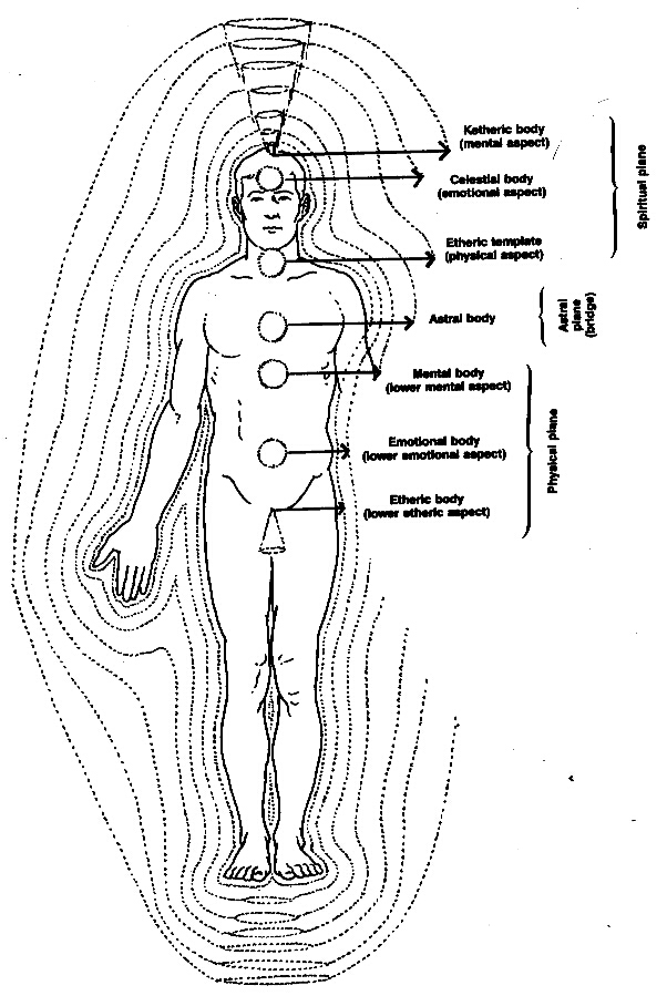 Chi, Prana, the Human Energy Field, and the Universal Energy